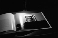 16.08-13 (analogish) Tags: 35mm 135film bw blackwhite film gasometeroberhausen kodaktrix400 leicamp oberhausen schwarzweiss sonnar wondersofnature wunderdernatur reflectaproscan7200 carlzeisscsonnar50mmf15
