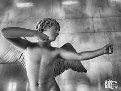 Cupdo en el Hermitage (Arturofotos) Tags: sanpetersburgo stpetersburg rusia travel viajes hermitage ermitage museum museo escultura sculpture bn bw blackwhite cupid