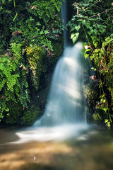 IMG_8447 (petrosli) Tags: nature water canon eos500d eos landscape