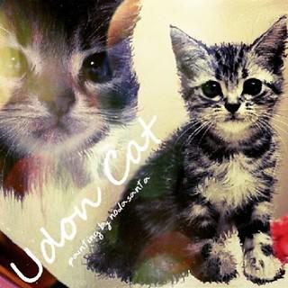 The Cat UDON お友達の「ウドンちゃん」猫をお絵描きした作品! 以前にお絵描きした作品中から、お気に入りを色編集加工してアップしております。 #DigitalArt #painting #pet #Cat #Design #JapanArt #Japan #Beautiful #シャム猫 https://m.youtube.com/watch?v=8yIM3rDcMvk&feature=em-subs_digest#