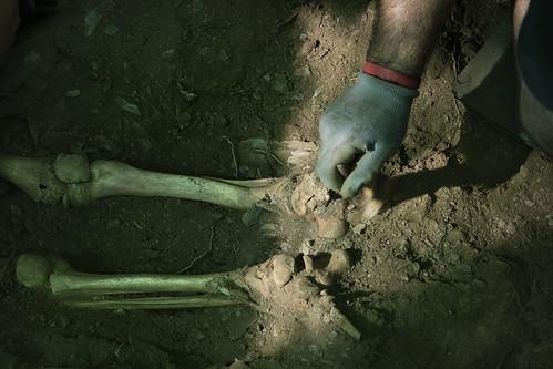 Exhumación As Covas (Lugo) (9)