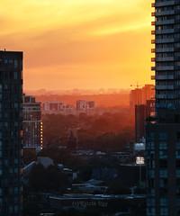 Magic Sunset Light and Urban Layers (Katrin Ray) Tags: magicsunsetlightandurbanlayers evening light sunset buildings downtowntoronto toronto ontario canada katrinray dreamscapesoftoronto canon canonphotography eos rebel t6i 750d