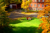 Sunny Autumn Day in Tartu (tarmo888) Tags: päike shadow vari miniature pictureeffect roheline kollane leaf autumn nex7 sel18200 geotaggedphoto geosetter photoimage фотоfoto year2012 europe estonia estland eesti welcometoestonia visitestonia positivelysurprising tartu tartumaa lawn muru nice faketiltshift golden lime greencolor yellowcolor foursquare:venue=4b6affc6f964a52094eb2be3 osm:node=912019589 colorful sunshine sony sonyα sonyalpha special serene