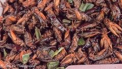 Fried insects (SleekViv) Tags: food thailand bangkok insects bugs
