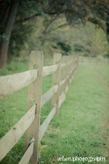 finally friday! (Urban.Photography) Tags: rural fence bokeh textured thechallengefactory skeletalmesstextures lesbrumestexture