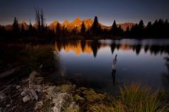 Fiery Tetons_DSC8897_E (antelope reflection) Tags: lake reflection fall water colors sunrise pond beaver wyoming jacksonhole grandtetonnationalpark schwabacherlanding nikond90 tamron1024