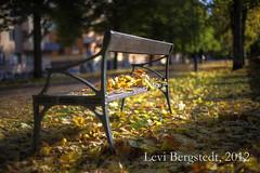 Autumn leaves - Uppsala (Levi Bergstedt) Tags: autumn fall leaves autumnleaves 1ds hdr upsala hdri fallenleaves markii 1dsmarkii canoneos1dsmarkii canon1dsmarkii