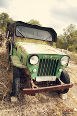 Jeep Viasa (Salva Coll) Tags: old verde car jeep 4x4 retro bosque coche antiguo vehiculo todoterreno