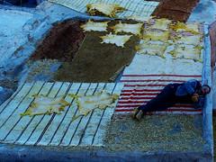 (Andrea Madaro) Tags: pen andrea olympus morocco maroc marocco 43 2012 ep2 m43 madaro micri micro43 epl2