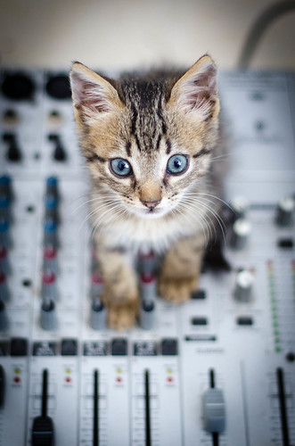 Peach, the sound engineer