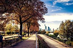 Welcome to Frankfurt | Autumn (Bony Nguyen) Tags: city autumn urban color skyline canon frankfurt herbst stadt frankfurtammain mainufer 1635mm meinestadt 5dmarkii 5dm2 herbst2012 frankfurtherbst