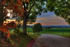 Herbstweg (Helmut Reichelt) Tags: leica germany landscape deutschland bavaria abend herbst oberbayern landschaft hdr weg m9 holzhausen photomatix strase degerndorf viveza leicasummaritm50mm