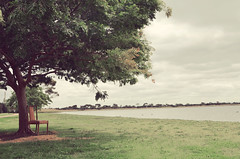 What once was (Dinoying) Tags: lake tree nature chair scenery altona melboure cherrylake
