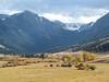 Montana Elk Hunt - Bozeman 5