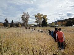 RBR field programs '12 - '13