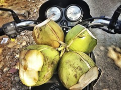Motorcycle with coconuts