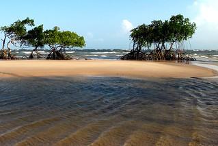 Pará praia