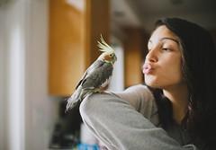 kiss the bird