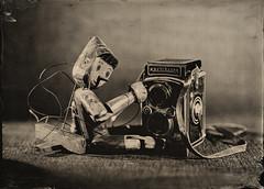 Pinocchio and camera (Ilya Egorkin) Tags: tintype pinocchio alternativeprocess altprocess collodion 13x18 wetplatecollodion