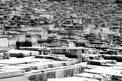 Lascia che i Morti seppelliscano i Loro morti (bebo82) Tags: blackandwhite bw cemetery pentax jerusalem jewish biancoenero cimitero gerusalemme ebraico pentaxk20d pentaxk20