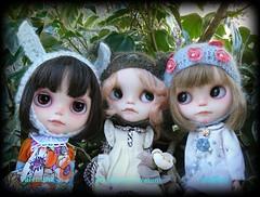 My MeiMei Girls ♥