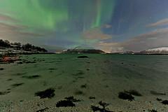 1K7A6721-Auroras and dinoflagellates (Frank Olsen) Tags: longexposure winter norway canon arctic aurora blokken vesteralen dinoflagellates canon5dmk3 frankolsen
