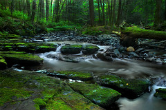 Emerald Forest (SunnyDazzled) Tags: longexposure trees summer nature creek forest river landscape evening moss woods scenery stones waterfalls greens flowing