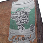 Birmingham & Fazeley Canal - Livery Street - Del Monte Grapes thumbnail