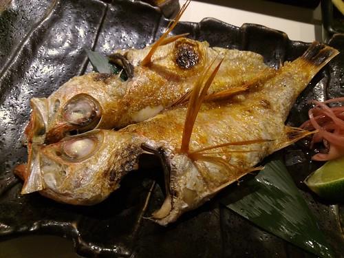 P_20130118_203649紅喉300公尺深的魚南澳花蓮外海