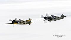 Focke-Wulf Fw 190 A-5 & Messerschmitt Bf 109 E-3 (Emil) (Hawg Wild Photography) Tags: messerschmitt bf 109 e3 emil fockewulf fw 190 a5 paulgallen kevin eldridge john penny german wwii fighter aircraft airplane painefieldairportkpae everettwashington terrygreen nikon nikond4s 70200mm vr