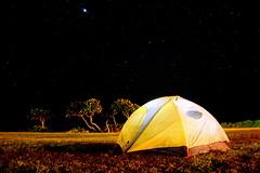 Camping at Kea'au Beach Park, Oahu, Hawaii (Damon Tighe) Tags: park longexposure camping beach night stars hawaii glow oahu tent keaau