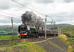 Cumbria Duchess (4486Merlin) Tags: duchessofsutherland semi 46233 cumbria england europe exlms lms8pduchess railways steam transport unitedkingdom wcml greenholme gbr cumbrianmountainexpress