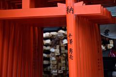 DSC_2125 (yas6809) Tags: japan kyoto kitanotenmangu   tokinaatx70200mmf4profxvcms