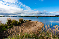 Loch of Skene 24 August 2016-0006.jpg (JamesPDeans.co.uk) Tags: grass digital downloads for licence sunny landscape plants gb water industry weather loch unitedkingdom beach man who has everything aberdeenshire nature sun bluesky lochofskene scotland publicutilities britain europe uk james p deans photography digitaldownloadsforlicence jamespdeansphotography forthemanwhohaseverything