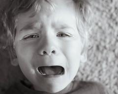 24/365 - Remorse for Kicking (kate.millerwilson) Tags: crying toddler three sad