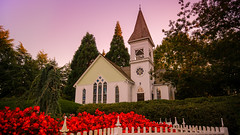 The Chapel (Sworldguy) Tags: minorupark richmond chapel church whitechapel gardens wedding destination landscape architecture rhododendron red fence sunset flowerbed
