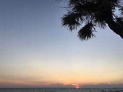 268/366 Breezes (Bernie Anderson) Tags: ifttt 500px no person sunset beach water sun sea sky ocean summer dawn travel nature seashore evening outdoors dusk tropical tree sand landscape