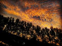 Morning #sunrise #sunrise_madness #sun #sunrisedaily #sunrisegram #sunrise_sunset_worldwide #sunny htc 10 be  brilliant (kadafione1234) Tags: sun sunrisedaily sunrisesunsetworldwide sunny sunrisegram sunrisemadness sunrise
