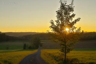 Sunset in Zedtwitz