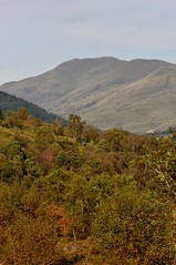 Achray Forest (robert55012) Tags: scotland trossachs achrayforest queenelizabethforestpark