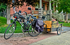 Larry The Handyman Strikes Gold -   Ottawa 08 16 (Mikey G Ottawa) Tags: mikeygottawa canada ontario ottawa street city eccles chinatown larrythehandyman bike velo fahrrad bicycle biketrailer trailer handyman story gold found buriedtreasure bikedump larry nugget explored