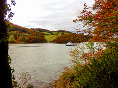 View from Agatha Christie's Greenway Estate, Devon (photphobia) Tags: agathachristie greenway greenwayestate galmpton riverdart devon southdevon nationaltrust oldwivestale outdoor outside green water river boat boats ship ships barges