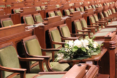 Mauril (Caleb Ficner) Tags: ottawa calebficner flower flowers parliament parliamenthill parliamentofcanada