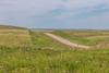 _MG_2205.jpg (nbowmanaz) Tags: saskachewan mossbank saskatchewan canada unitedstates southweststates places stvictor