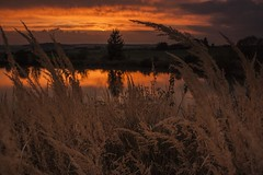 Autumn Twilight (frantiekl) Tags: dusk twilight sky autumn reflection wildflowers bright brightsky night landscape lake nature outdoor canon ndfilter bohemia
