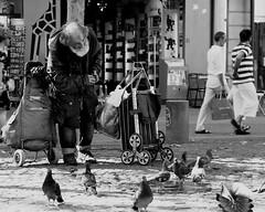 (J.Salmoral) Tags: portrait paris france frankreich retrato frança frankrijk portret francia francie портрет चित्र frankrike retrat portræt fransa porträtt 肖像 فرانسه 프랑스 francja franciaország arckép francuska франция فرنسا francë γαλλία