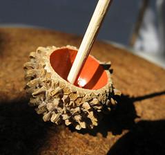 Oak Cupule Dreidels on Etsy (Shahar Kober) Tags: oak handmade hanukkah sevivon cupule dreidels