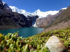 Lago Tullpacocha 4250m y el Nevado Tullparaju 5787m