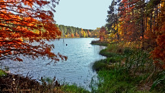 One Horse Gap Lake (3761) (sbuck1205) Tags: fallcolors shawneenationalforest onehorsegaplake