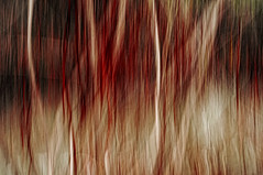 2/3 (Girardartist) Tags: abstraction abstrait artphotography photographieartistique